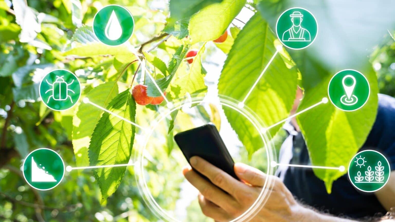 El monitoreo integral es la tendencia al dolor de la multiplicidad de datos que existen en el mundo agrícola